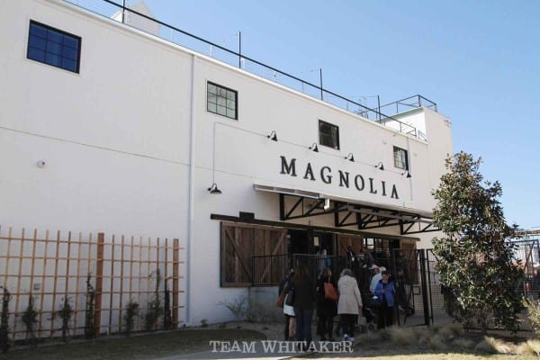 magnolia_8206
